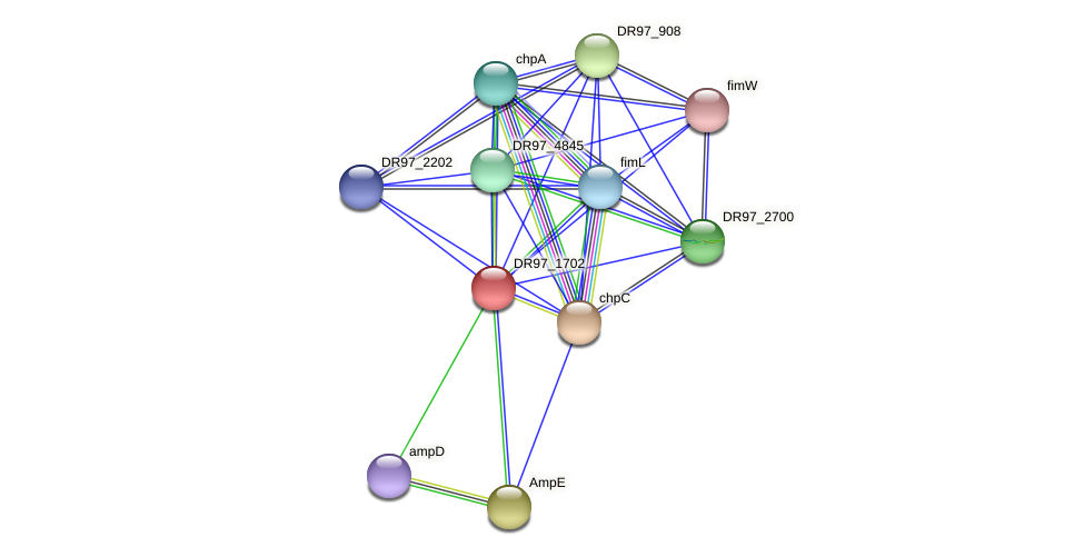 DR97_1702 protein (Pseudomonas aeruginosa) - STRING interaction network