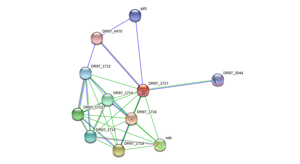 DR97_1717 protein (Pseudomonas aeruginosa) - STRING interaction network
