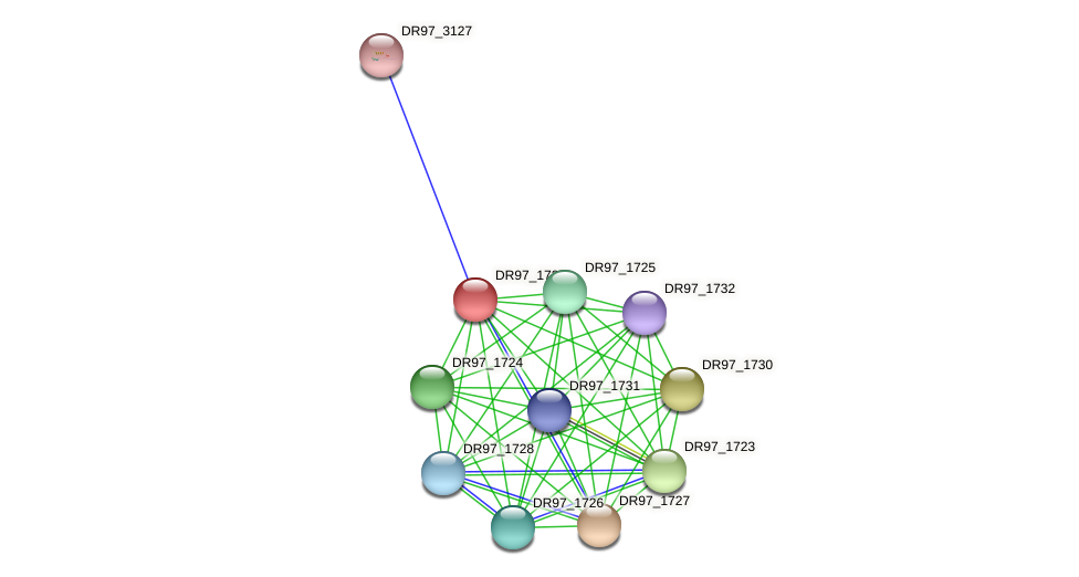 DR97_1729 protein (Pseudomonas aeruginosa) - STRING interaction network