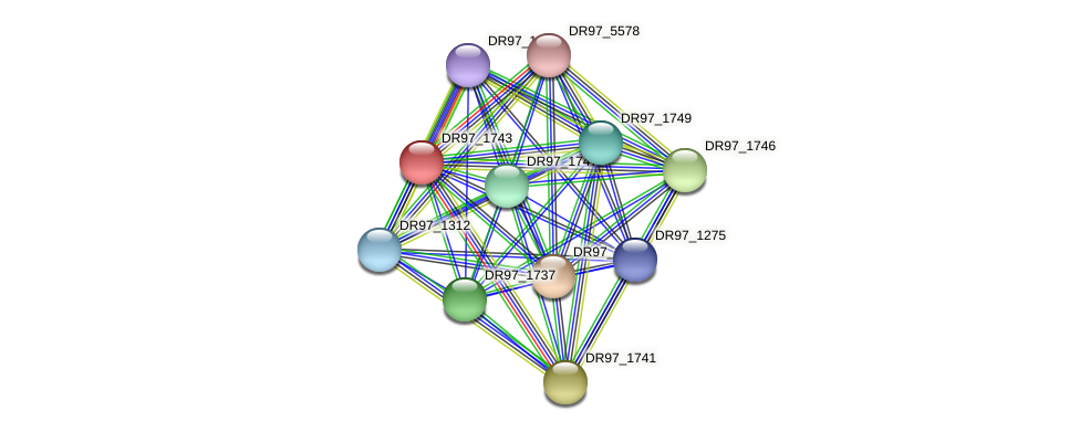 DR97_1743 protein (Pseudomonas aeruginosa) - STRING interaction network
