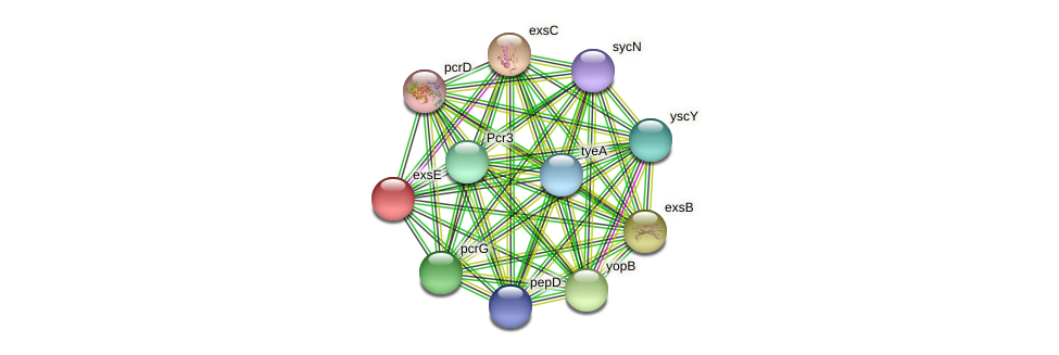 DR97_176 protein (Pseudomonas aeruginosa) - STRING interaction network