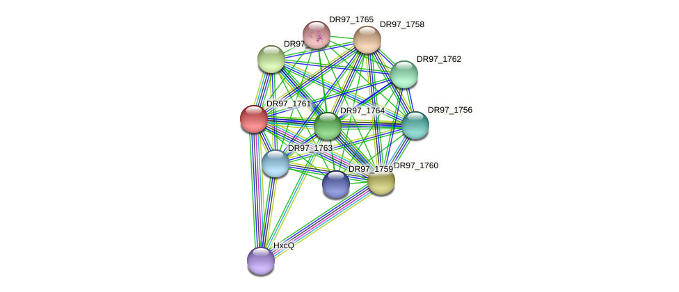 DR97_1761 protein (Pseudomonas aeruginosa) - STRING interaction network