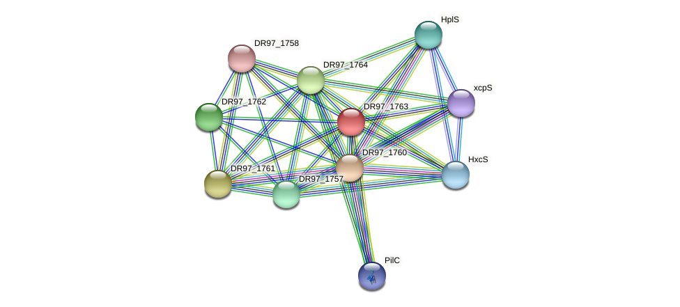 DR97_1763 protein (Pseudomonas aeruginosa) - STRING interaction network