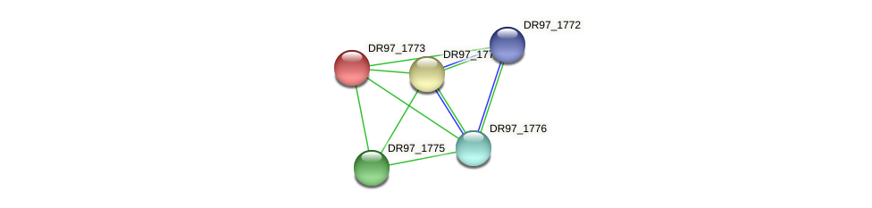 DR97_1773 protein (Pseudomonas aeruginosa) - STRING interaction network