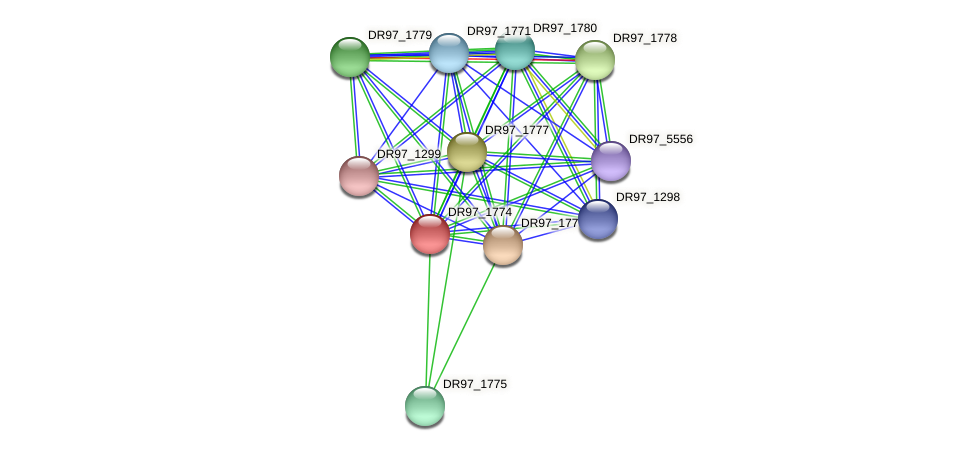 DR97_1774 protein (Pseudomonas aeruginosa) - STRING interaction network