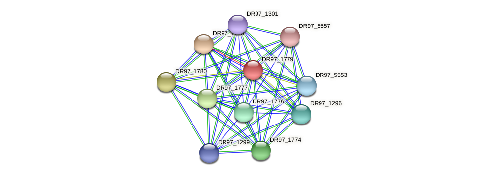 DR97_1779 protein (Pseudomonas aeruginosa) - STRING interaction network