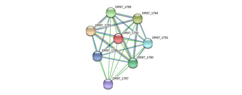 DR97_1792 protein (Pseudomonas aeruginosa) - STRING interaction network