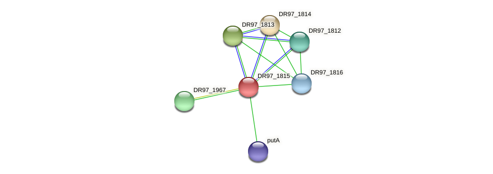 DR97_1815 protein (Pseudomonas aeruginosa) - STRING interaction network