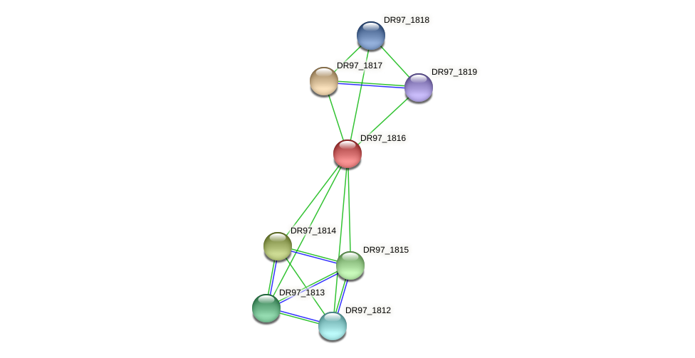 DR97_1816 protein (Pseudomonas aeruginosa) - STRING interaction network