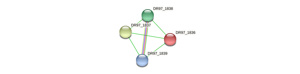 DR97_1836 protein (Pseudomonas aeruginosa) - STRING interaction network