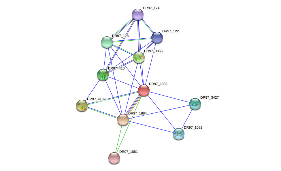 DR97_1882 protein (Pseudomonas aeruginosa) - STRING interaction network