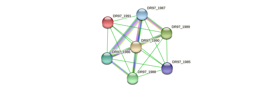 DR97_1991 protein (Pseudomonas aeruginosa) - STRING interaction network