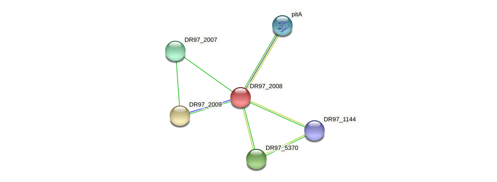 DR97_2008 protein (Pseudomonas aeruginosa) - STRING interaction network