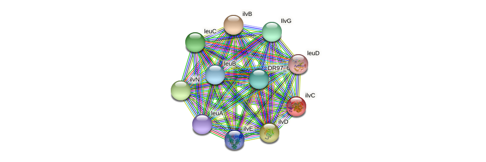 ilvC protein (Pseudomonas aeruginosa) - STRING interaction network