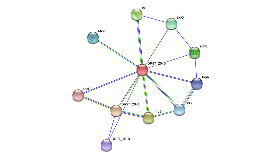 DR97_2040 protein (Pseudomonas aeruginosa) - STRING interaction network