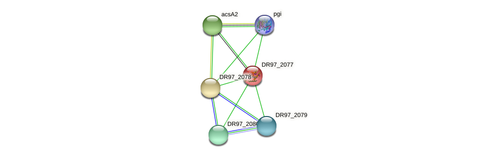 DR97_2077 protein (Pseudomonas aeruginosa) - STRING interaction network