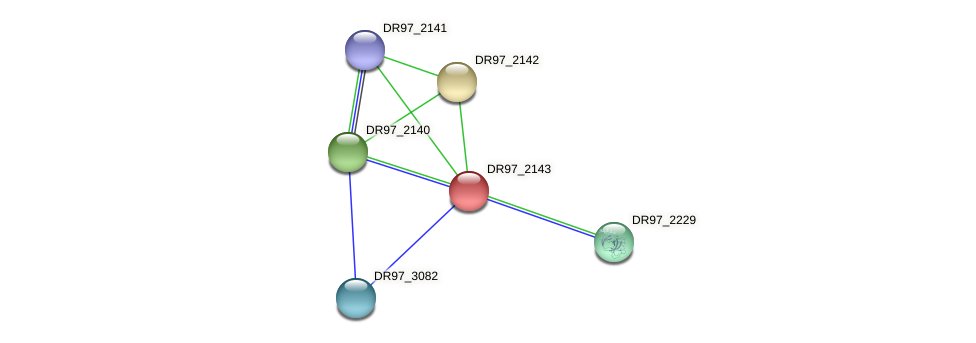 DR97_2143 protein (Pseudomonas aeruginosa) - STRING interaction network