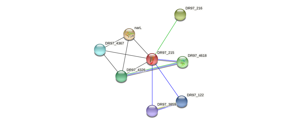 DR97_215 protein (Pseudomonas aeruginosa) - STRING interaction network
