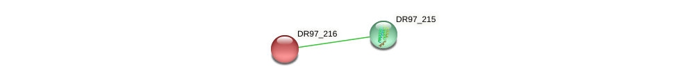DR97_216 protein (Pseudomonas aeruginosa) - STRING interaction network