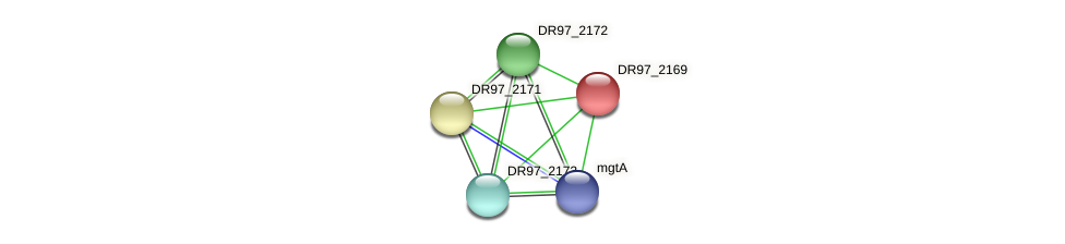 DR97_2169 protein (Pseudomonas aeruginosa) - STRING interaction network