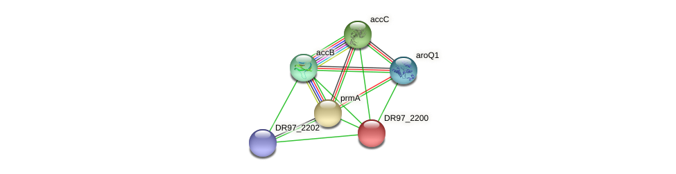 DR97_2200 protein (Pseudomonas aeruginosa) - STRING interaction network