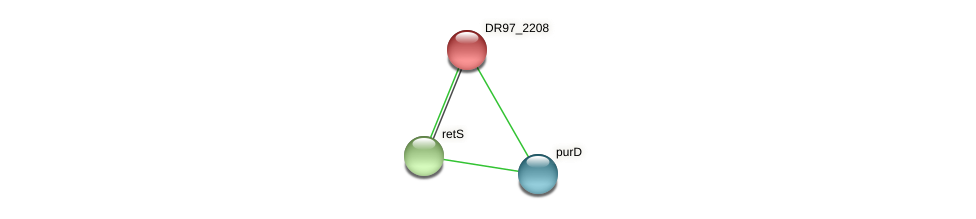 DR97_2208 protein (Pseudomonas aeruginosa) - STRING interaction network