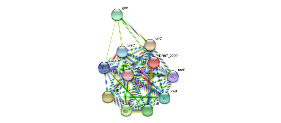 DR97_2209 protein (Pseudomonas aeruginosa) - STRING interaction network