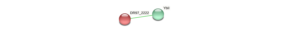 DR97_2222 protein (Pseudomonas aeruginosa) - STRING interaction network