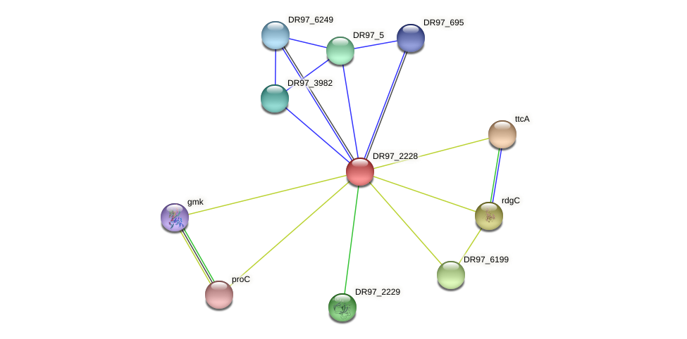 DR97_2228 protein (Pseudomonas aeruginosa) - STRING interaction network