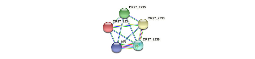 DR97_2234 protein (Pseudomonas aeruginosa) - STRING interaction network