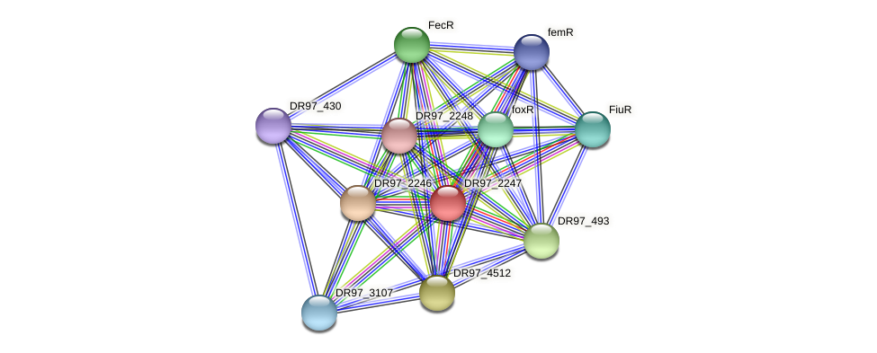 DR97_2247 protein (Pseudomonas aeruginosa) - STRING interaction network