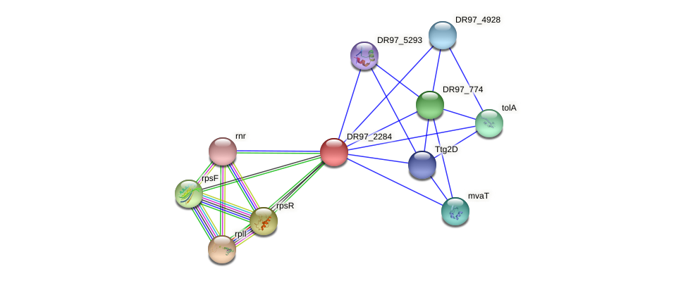 DR97_2284 protein (Pseudomonas aeruginosa) - STRING interaction network