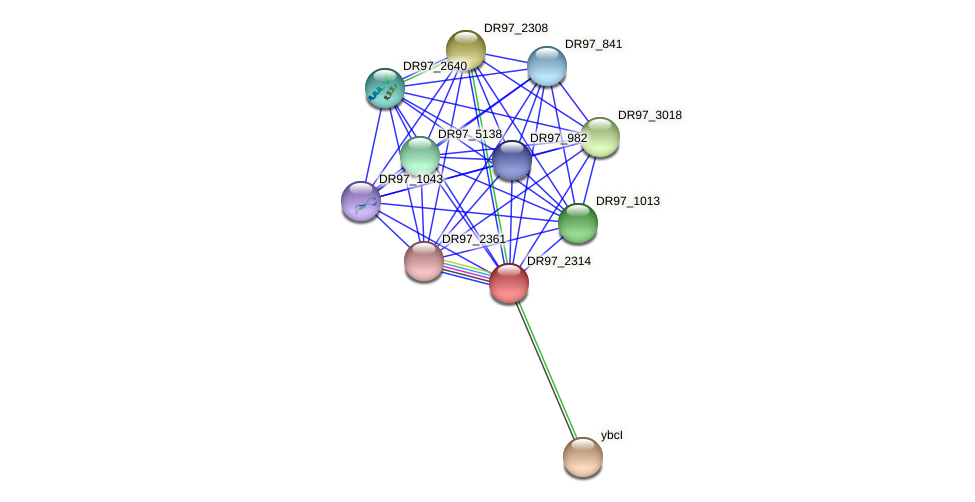 DR97_2314 protein (Pseudomonas aeruginosa) - STRING interaction network