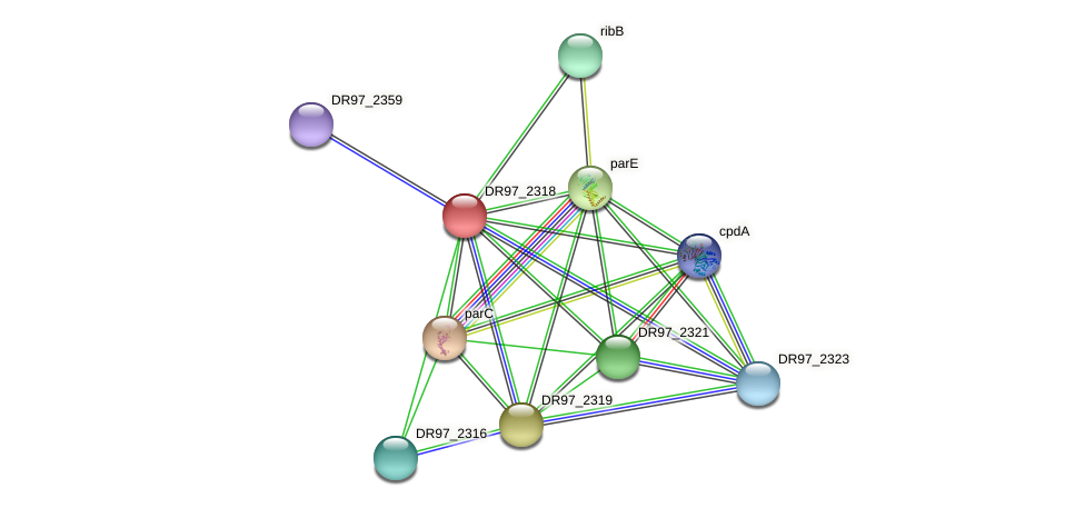 DR97_2318 protein (Pseudomonas aeruginosa) - STRING interaction network