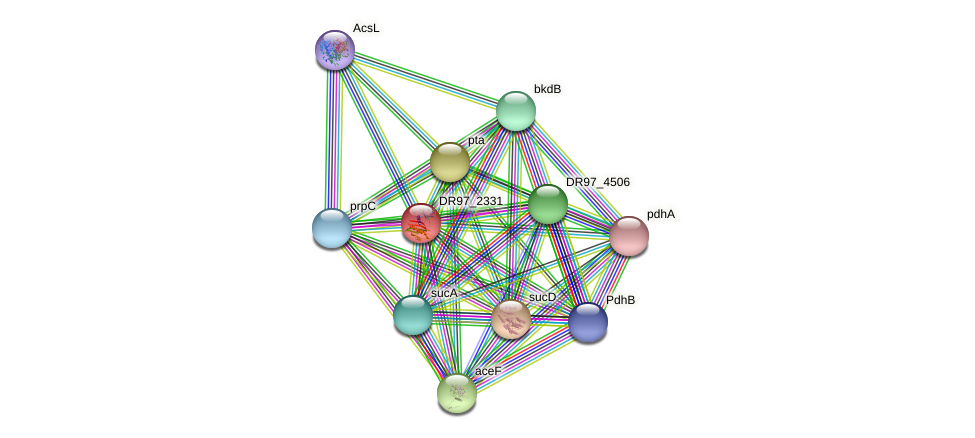 DR97_2331 protein (Pseudomonas aeruginosa) - STRING interaction network