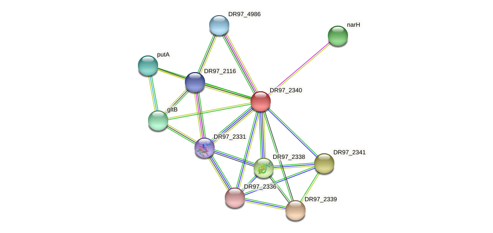 DR97_2340 protein (Pseudomonas aeruginosa) - STRING interaction network