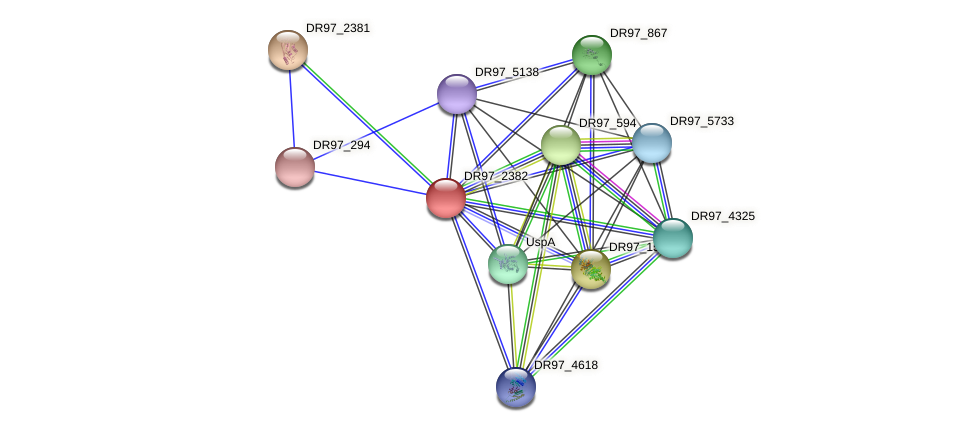 DR97_2382 protein (Pseudomonas aeruginosa) - STRING interaction network