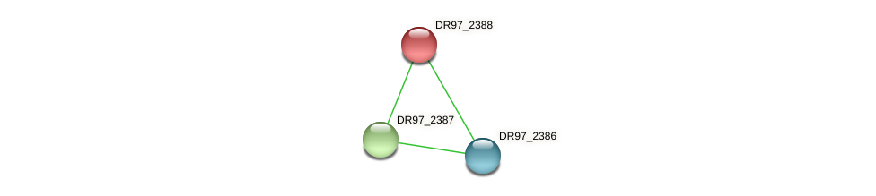 DR97_2388 protein (Pseudomonas aeruginosa) - STRING interaction network