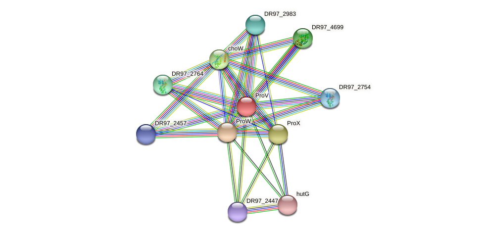 opuAA protein (Pseudomonas aeruginosa) - STRING interaction network