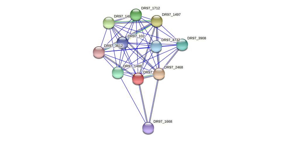 DR97_2467 protein (Pseudomonas aeruginosa) - STRING interaction network
