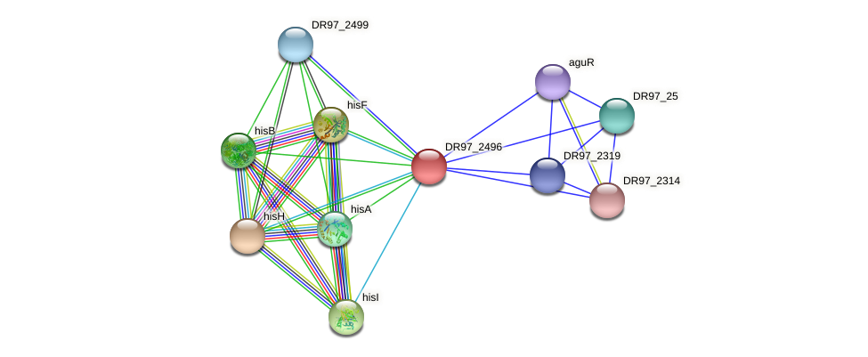 DR97_2496 protein (Pseudomonas aeruginosa) - STRING interaction network