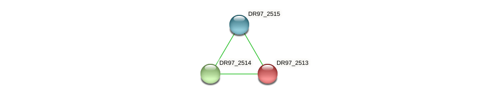 DR97_2513 protein (Pseudomonas aeruginosa) - STRING interaction network