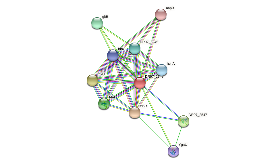 DR97_2549 protein (Pseudomonas aeruginosa) - STRING interaction network
