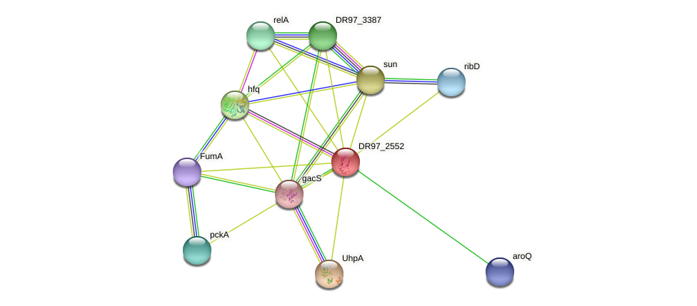 DR97_2552 protein (Pseudomonas aeruginosa) - STRING interaction network