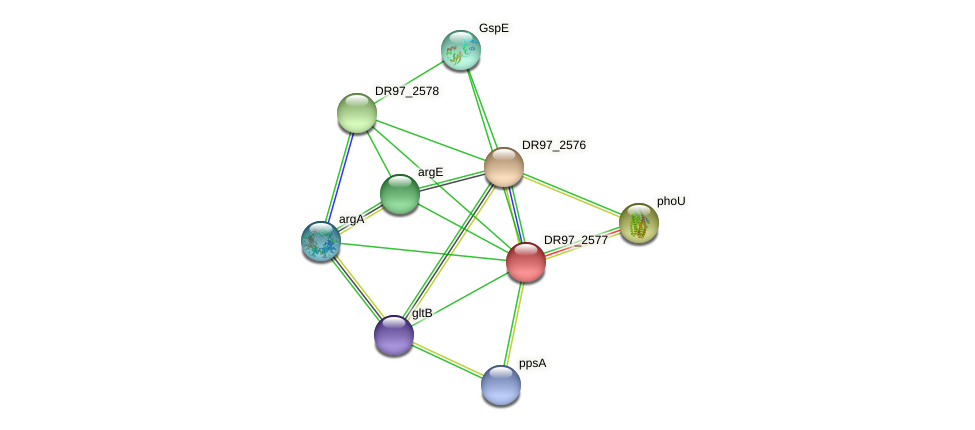 DR97_2577 protein (Pseudomonas aeruginosa) - STRING interaction network