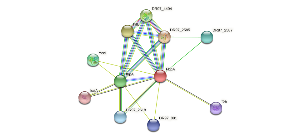 DR97_2586 protein (Pseudomonas aeruginosa) - STRING interaction network