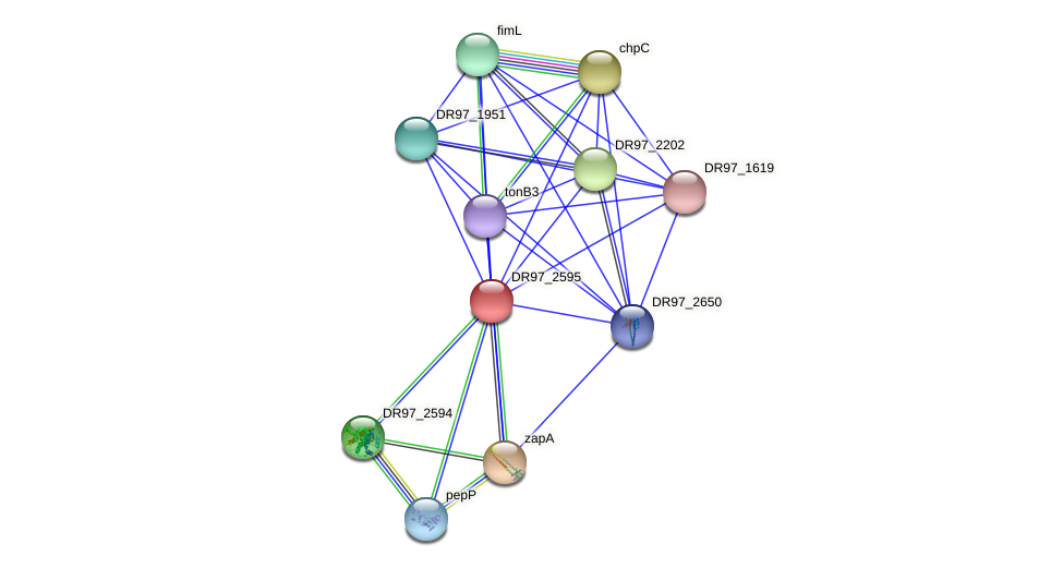 DR97_2595 protein (Pseudomonas aeruginosa) - STRING interaction network