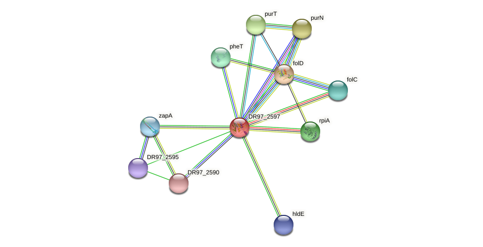 DR97_2597 protein (Pseudomonas aeruginosa) - STRING interaction network