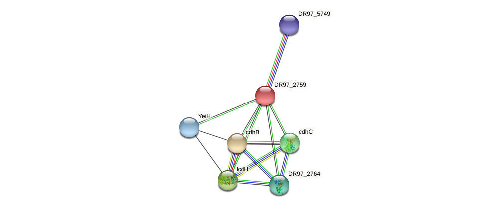 DR97_2759 protein (Pseudomonas aeruginosa) - STRING interaction network