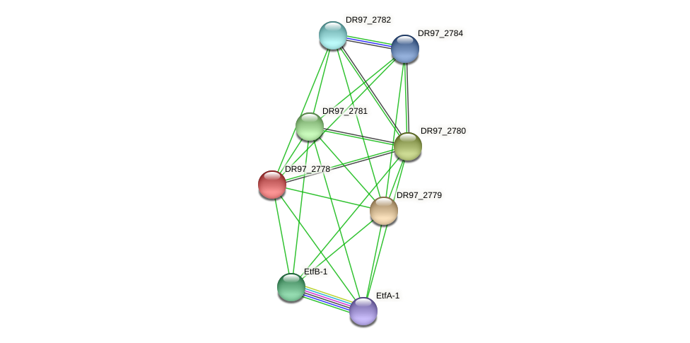 DR97_2778 protein (Pseudomonas aeruginosa) - STRING interaction network
